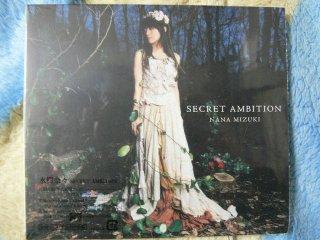 Secret_ambition
